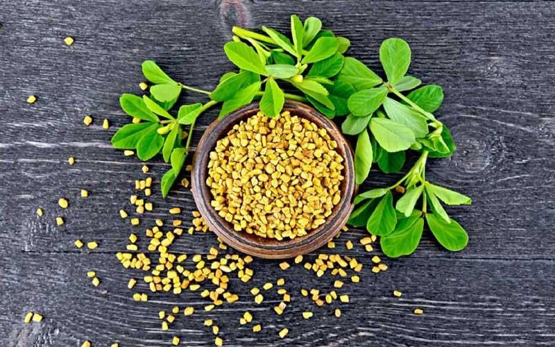 آیا بذر شنبلیله خوردنی است؟