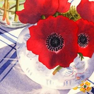 اساطیر یونان شقایق قرمز